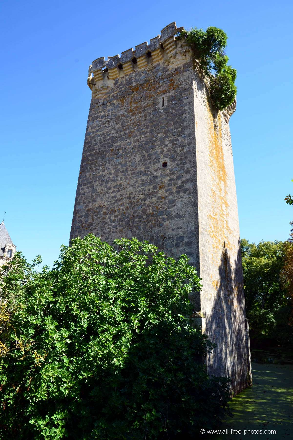Tower of Saint-Loup-Lamairé