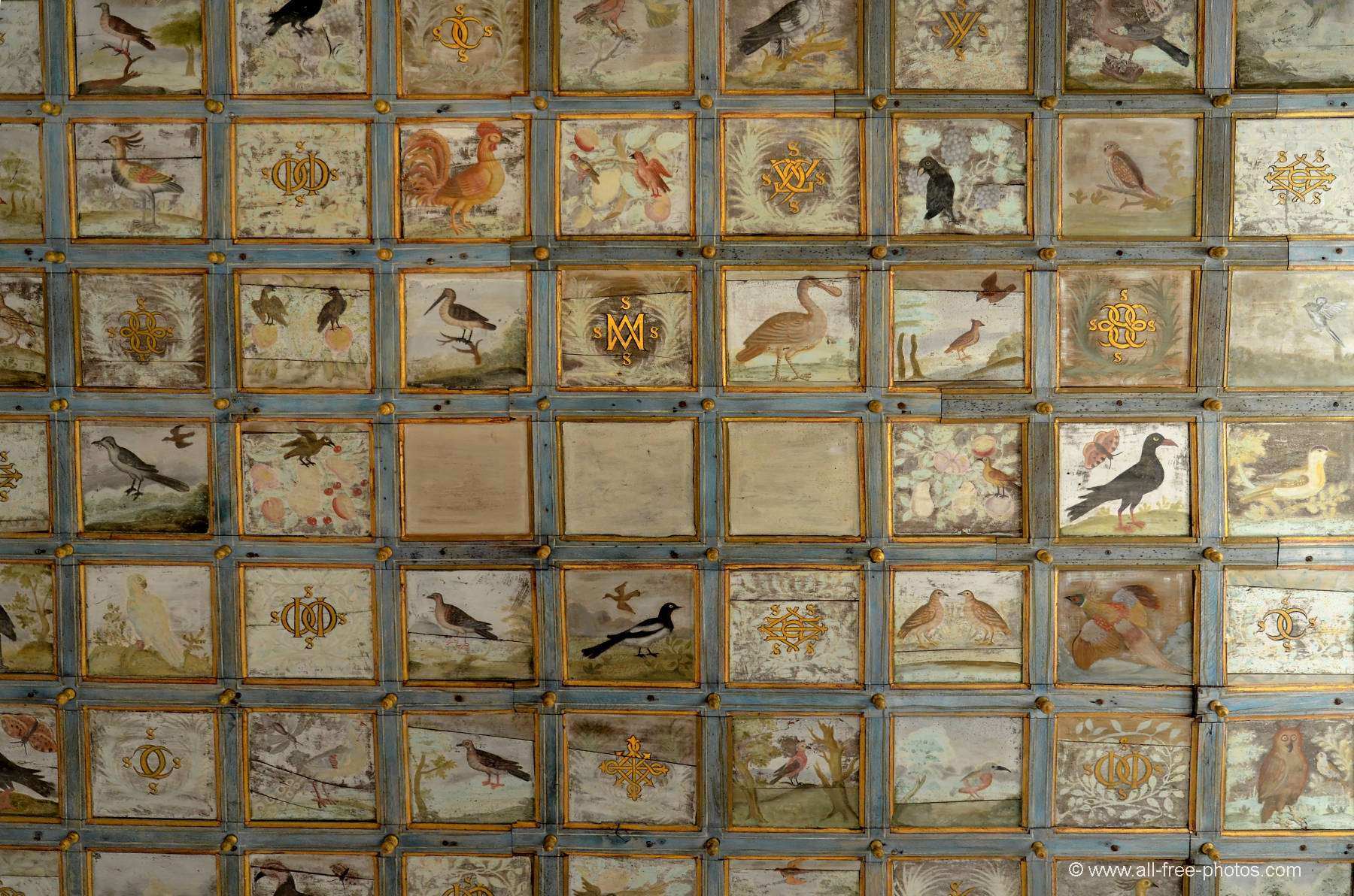 Ceiling - Chateau of Oiron