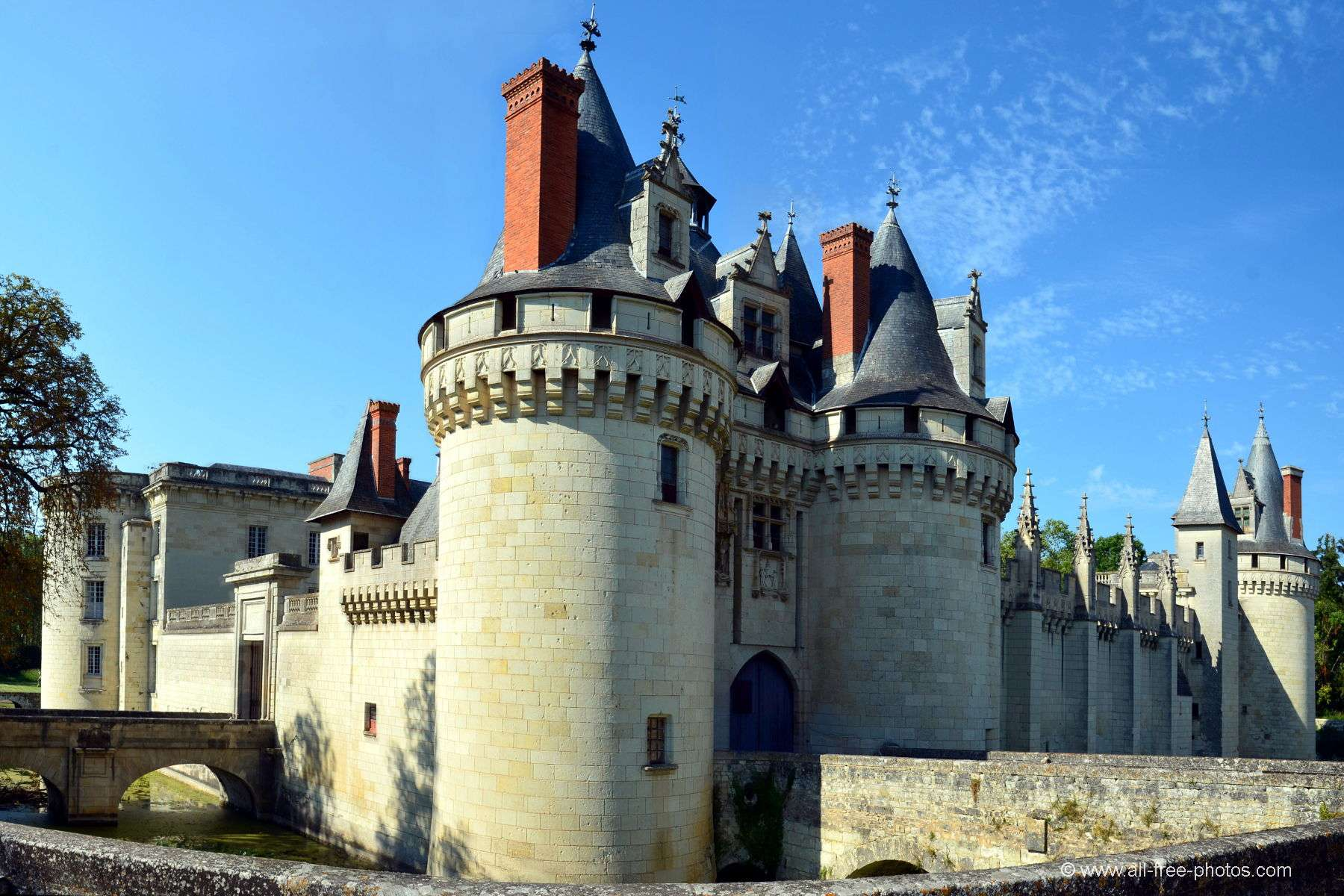 Castle of Dissay