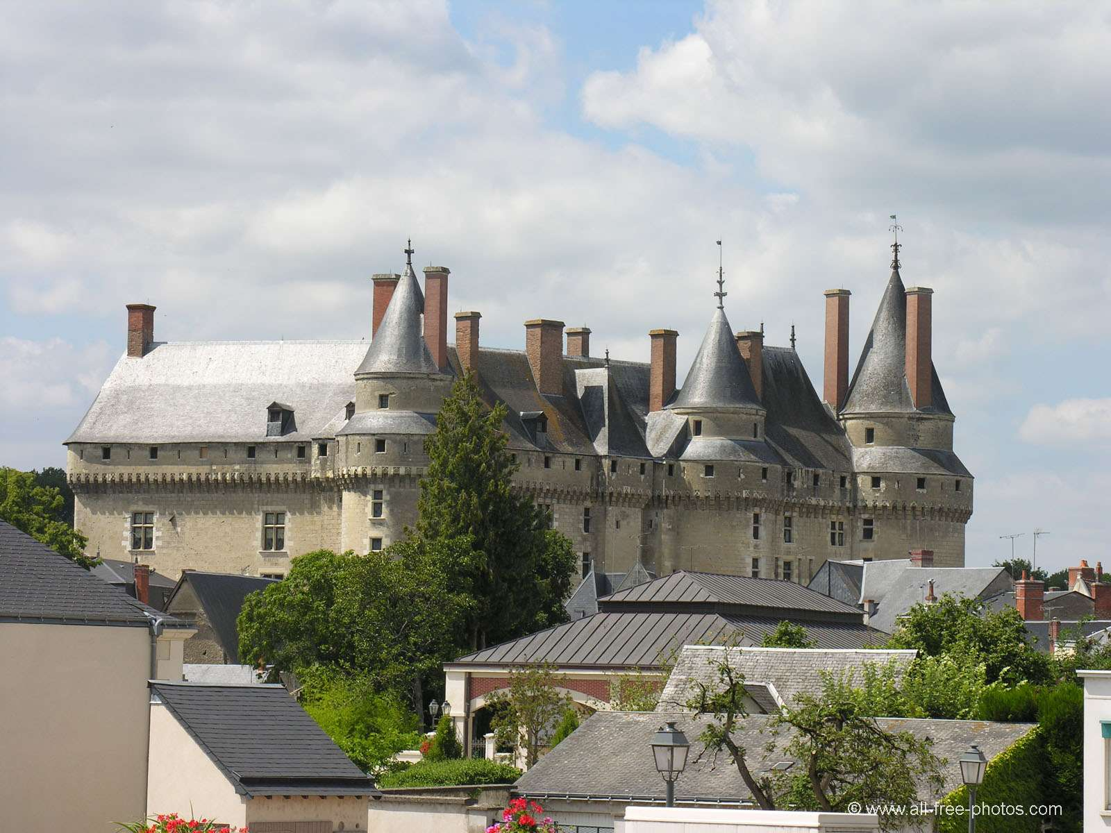 Castle of Langeais - France