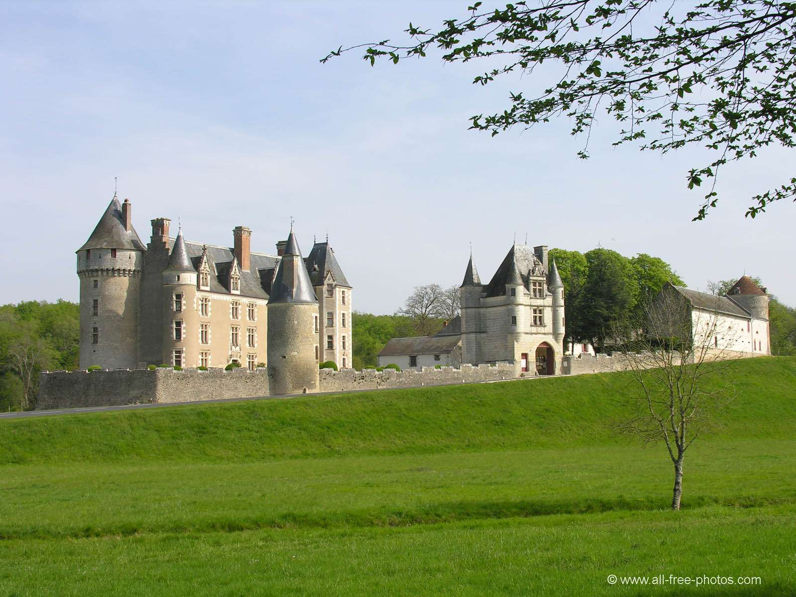 Castle of Montpoupon - France