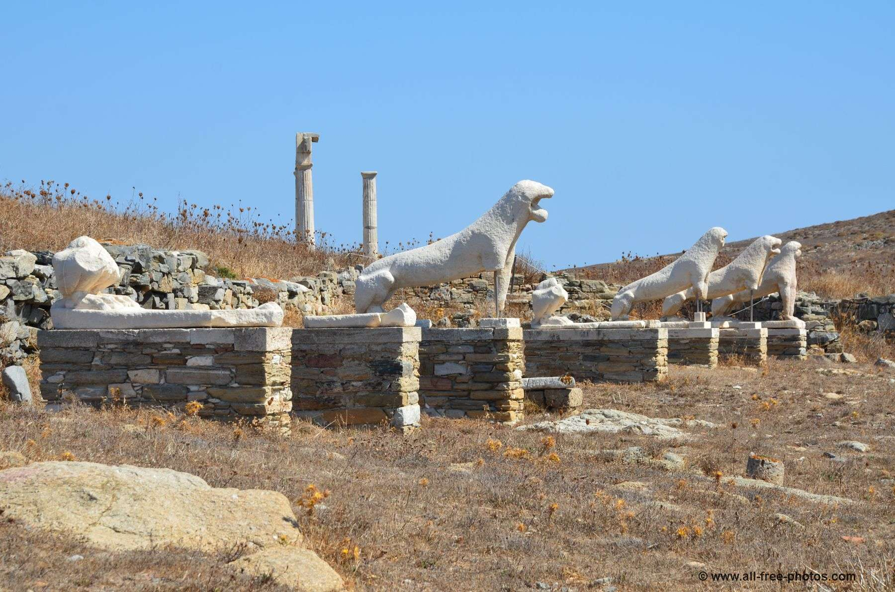 Lions -Delos Island - Greece